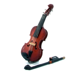 Violin with violin case